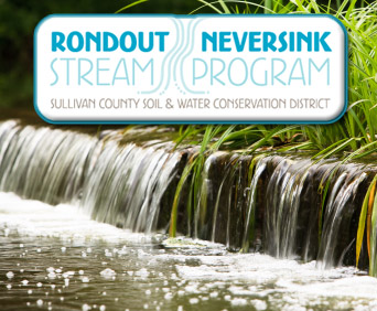 Rondout Neversink Stream Program